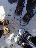 Snow Shoe 2015